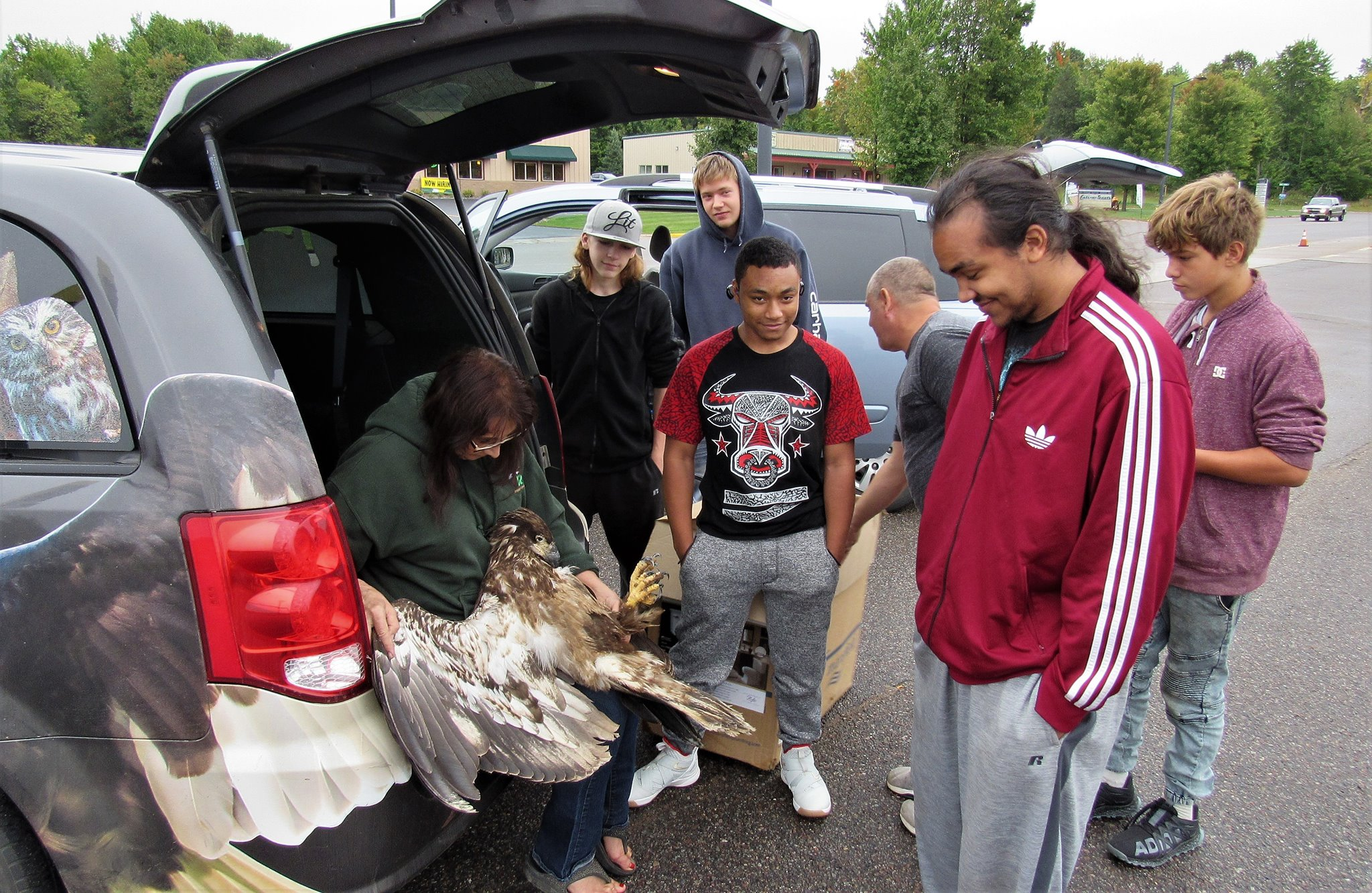 Getting a good look at the eagle after they transported her.