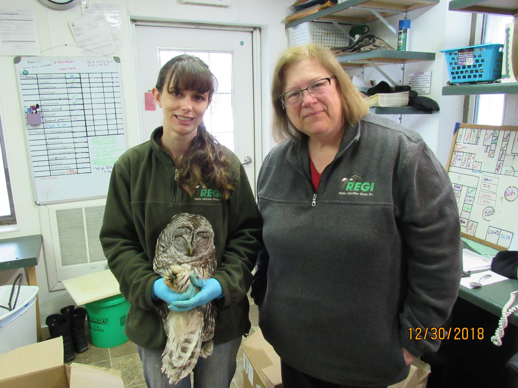 Our thanks to Kathleen Esqueda for dropping everything and transporting this critically ill owl to REGI.