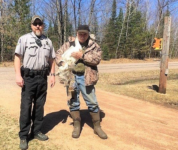State of WI DNR Warden Pat Novesky responded to the call for the injured Trumpeter Swan. He contacted REGI volunteers that specialize in water rescue for help. Kevin Grenzer holds the injured swan after capture.