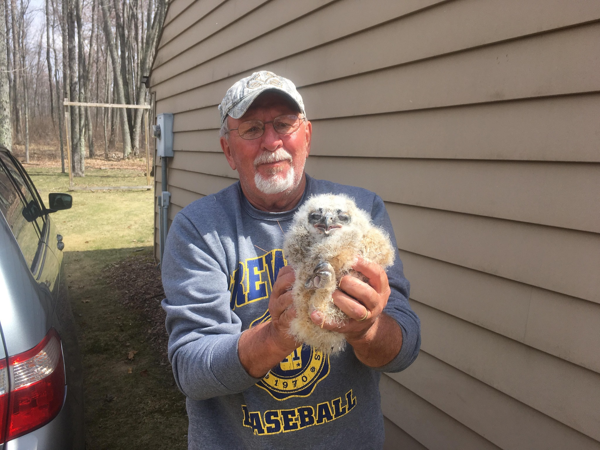 Our  thanks to the kind landowner that found the owl, and with the advice of  wildlife rehabilitators ,tried to reunite the parents and owlet. When  it became obvious the chick was unable to stand and was losing ground,  rescued it one again and got help.