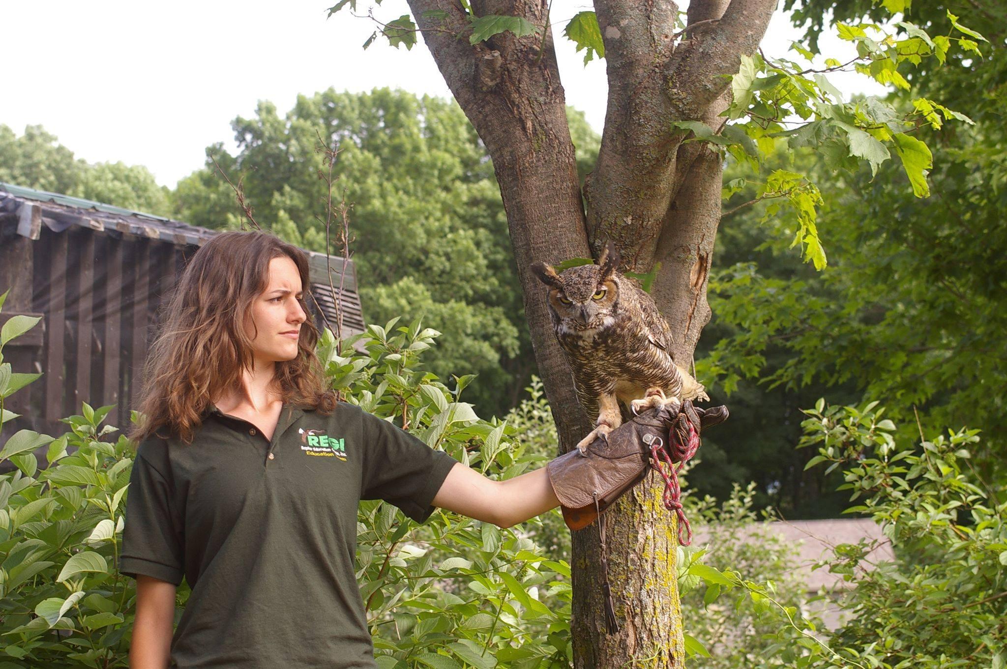 Brenna DeNamur (UW-Madison) demonstrates the amazing camouflage on owls