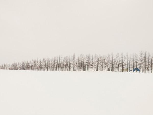 josef-hoflehner-patience-11-600x450.jpg