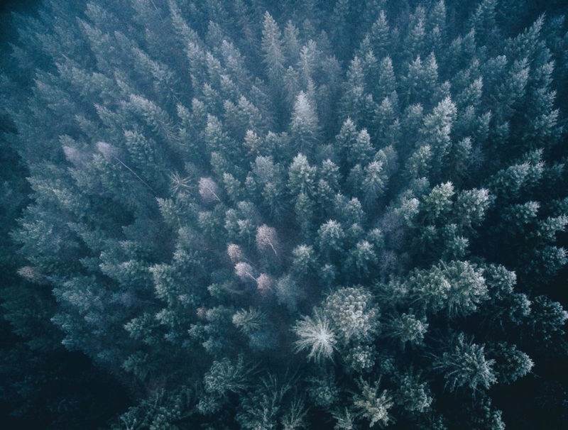 wonders-of-nature-from-above-by-tobias-hagg-8-800x606.jpg