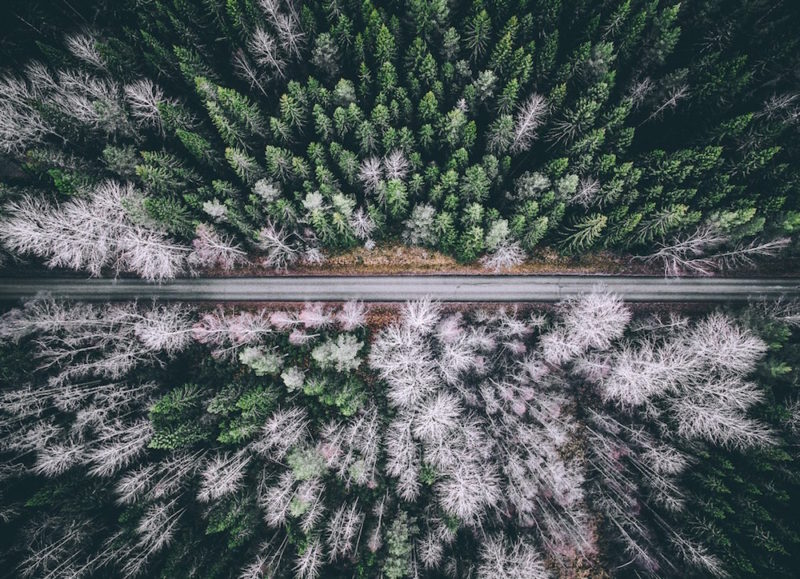 wonders-of-nature-from-above-by-tobias-hagg-10-800x579.jpg
