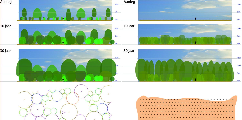 Integrale Beplantingsmethode Ruyten                                Traditionele methode (wijker- / blijver)