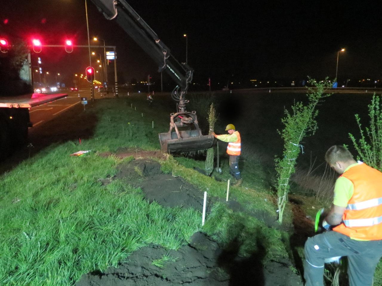 Nachtelijke aanplant heesters