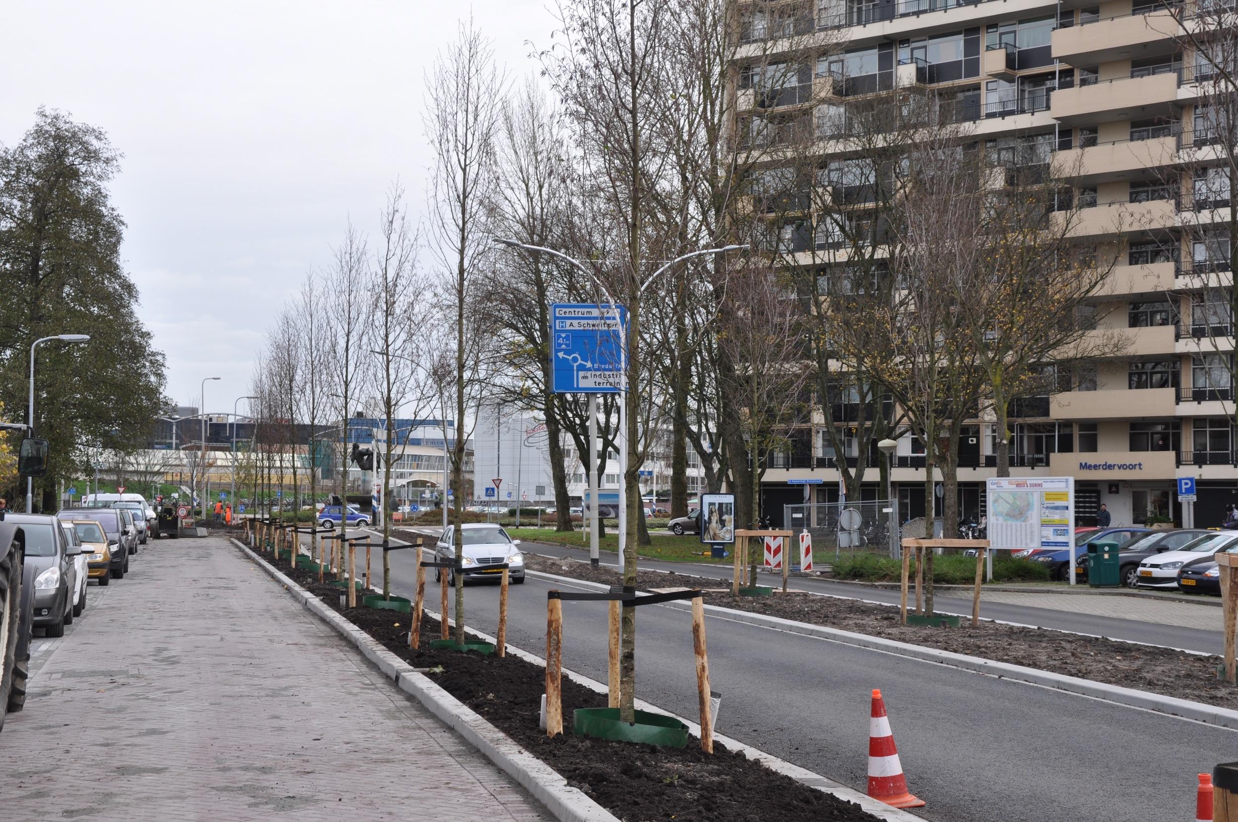 Reconstructie Pieter Zeemanstraat