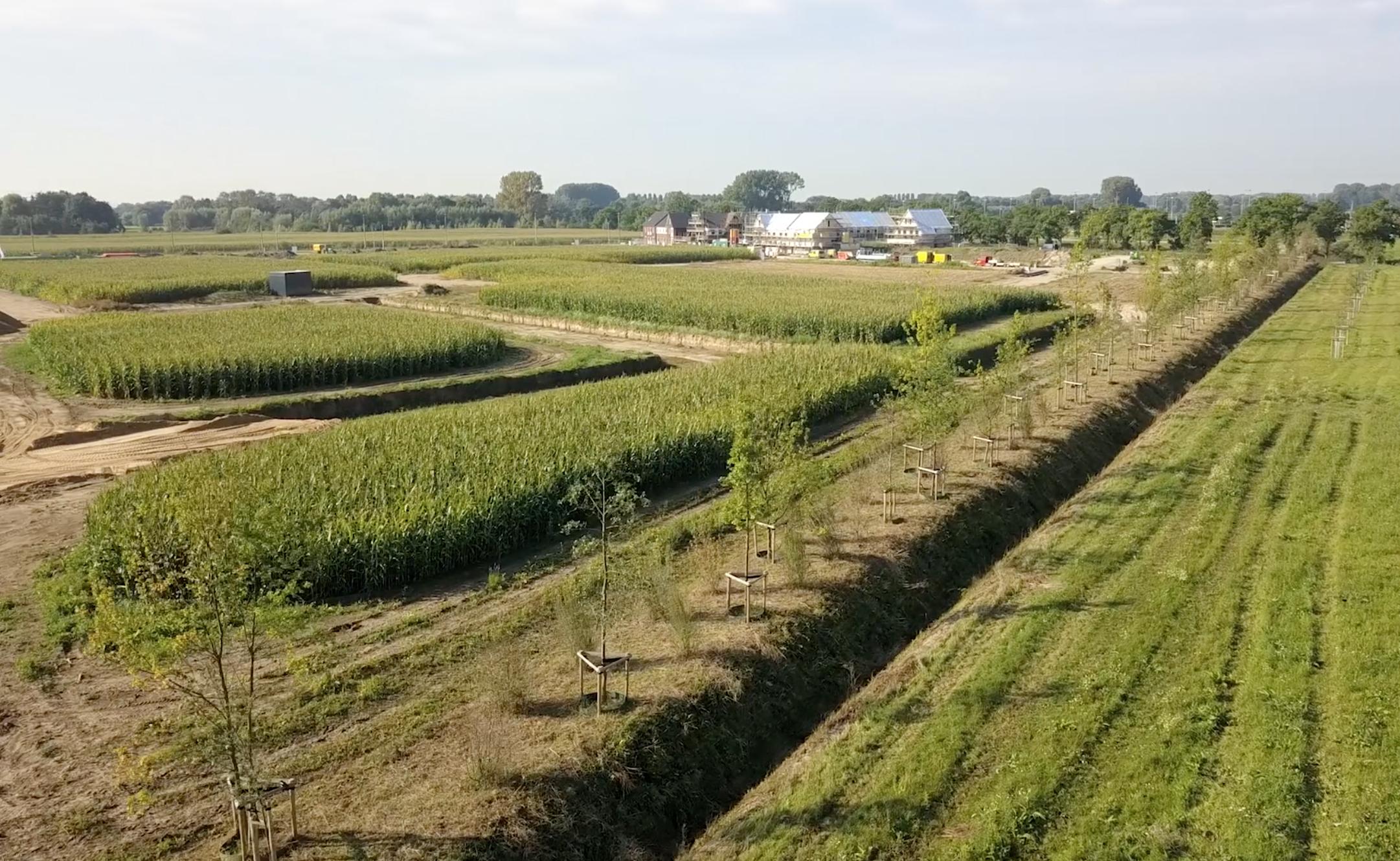 Arnhem-Zuid:Schuytgraaf 2e fase Houtwal