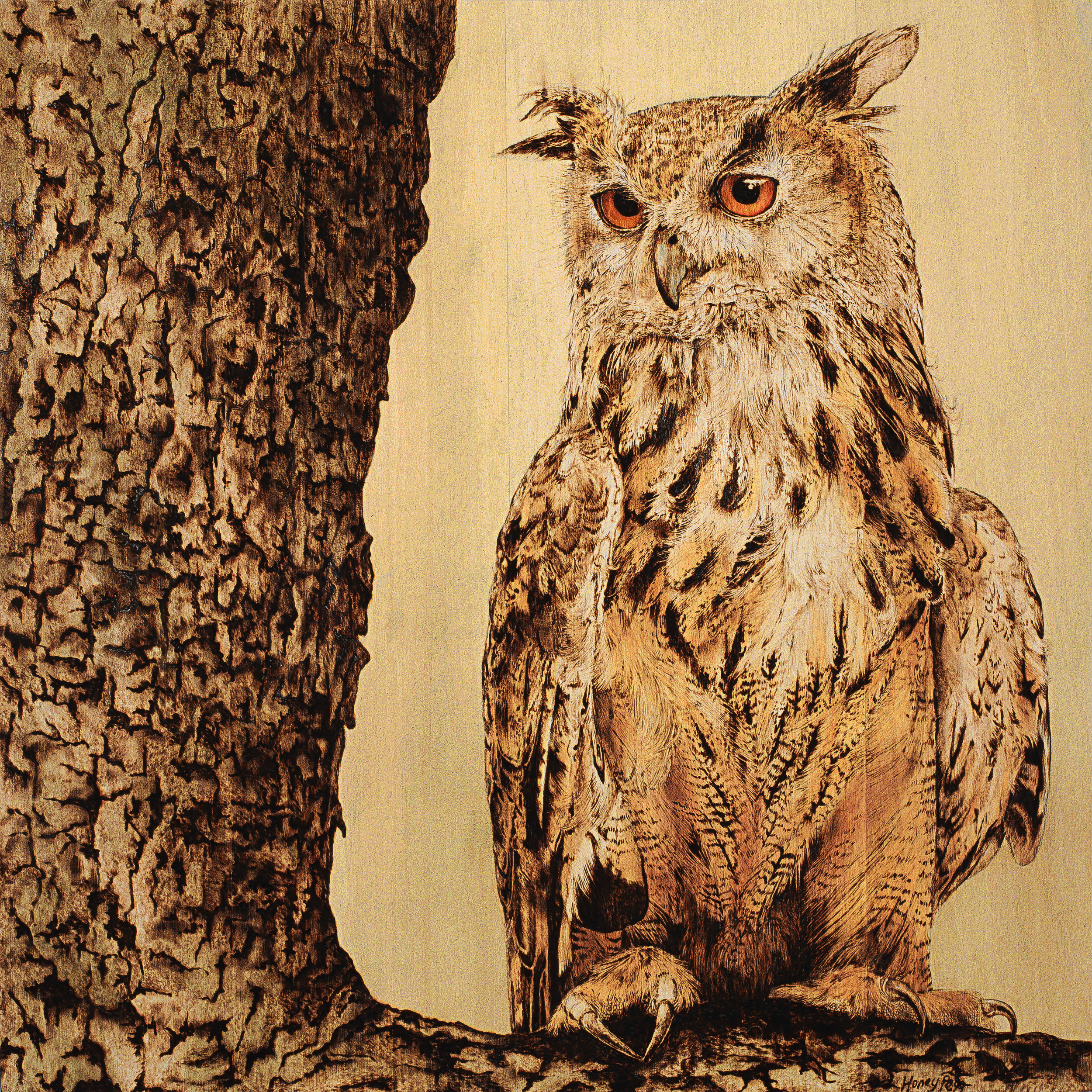 'Eagle Owl' by Honey Pegg
