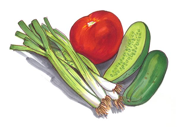 Tomato, cucumber and scallions