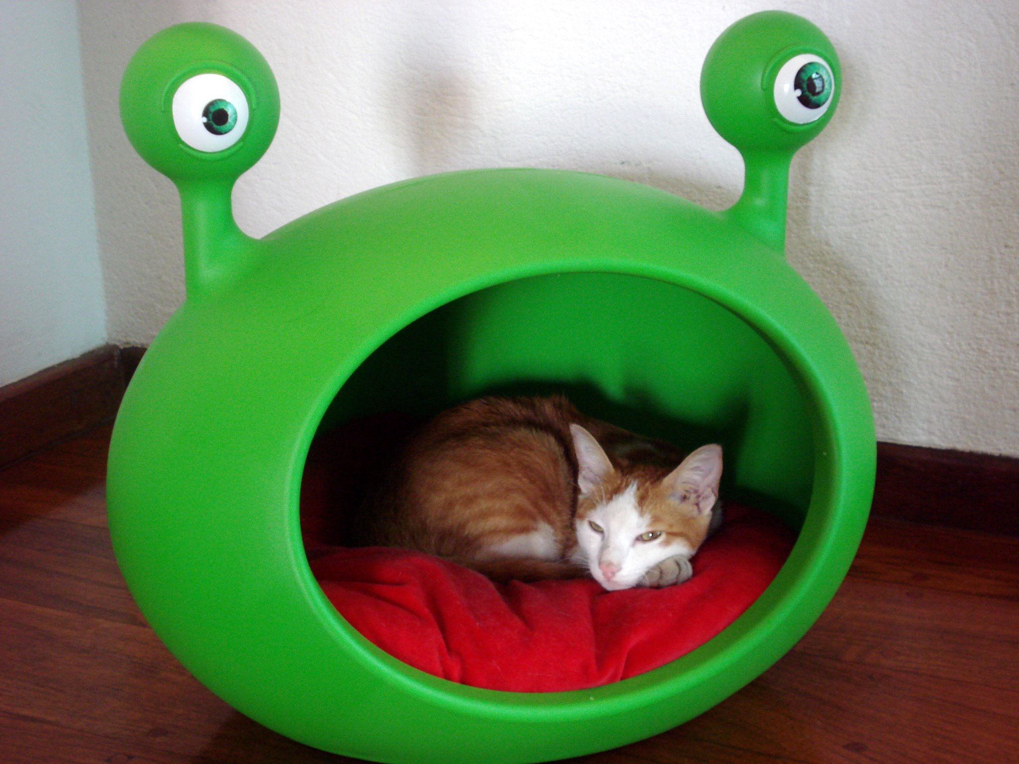 modern_funky_pet_house_bed_guisapet.jpg