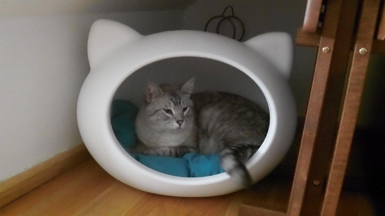 modern_white_cat_cave_bed_guisapet.jpg