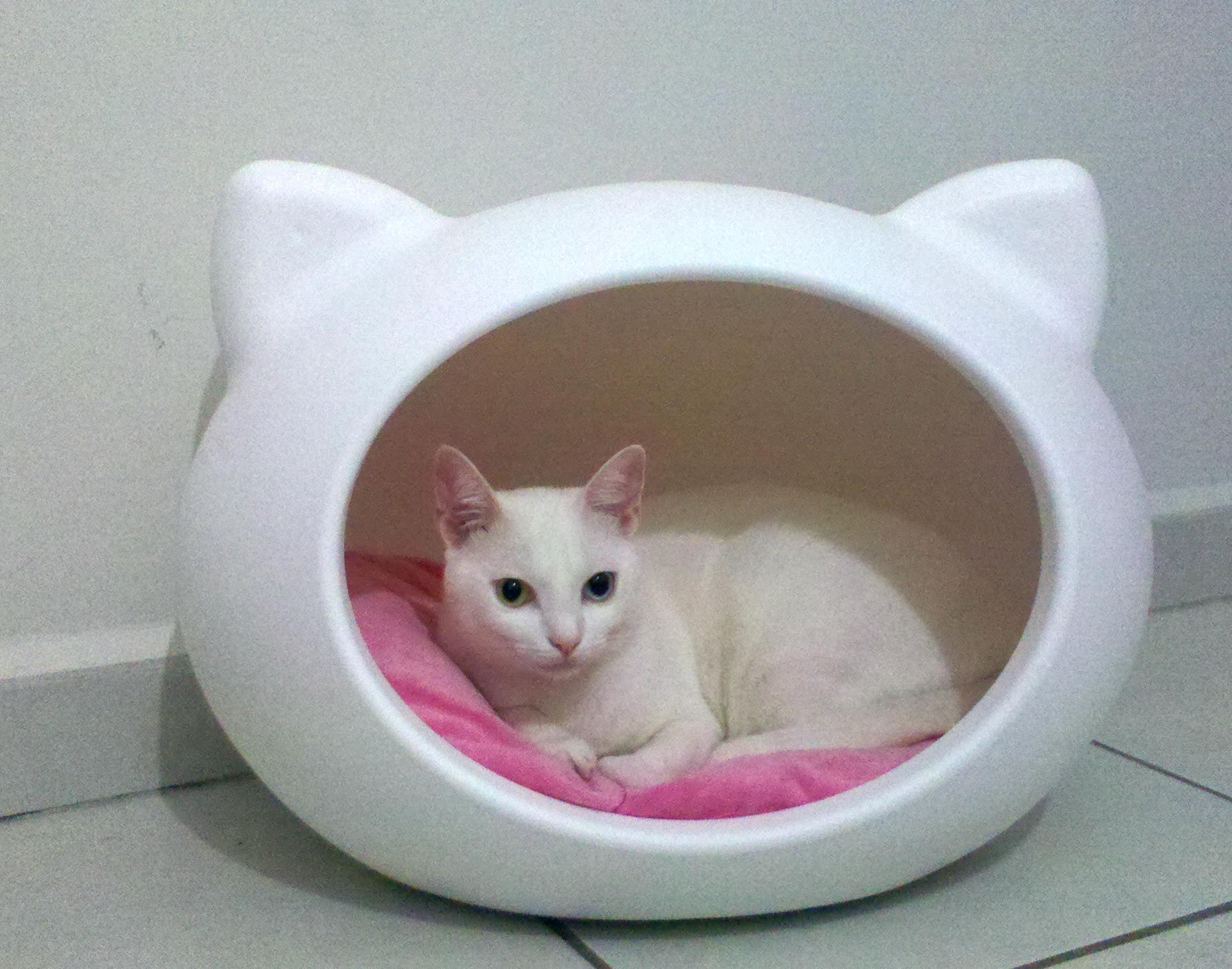 white_cat_beds_guisapet.jpg