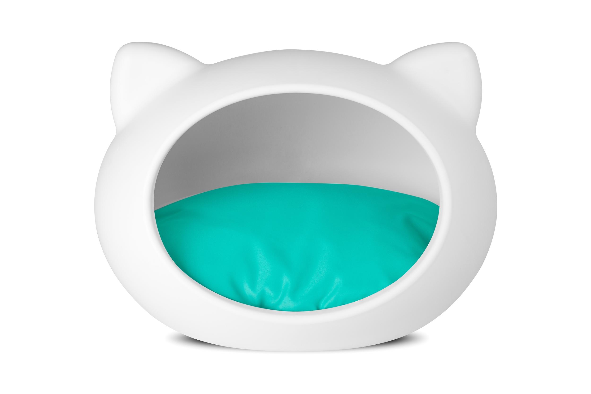 cat turquoise copy.jpg