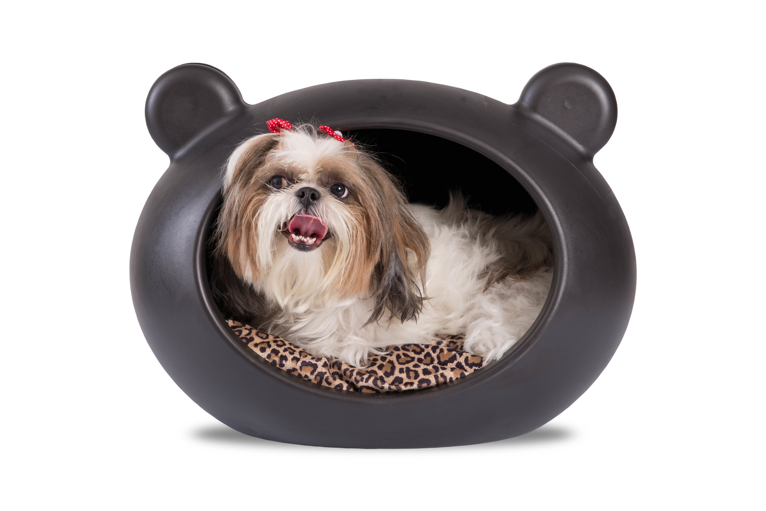 DCP-APT Small Black Dog Cave with Animal Print Cushion.jpg