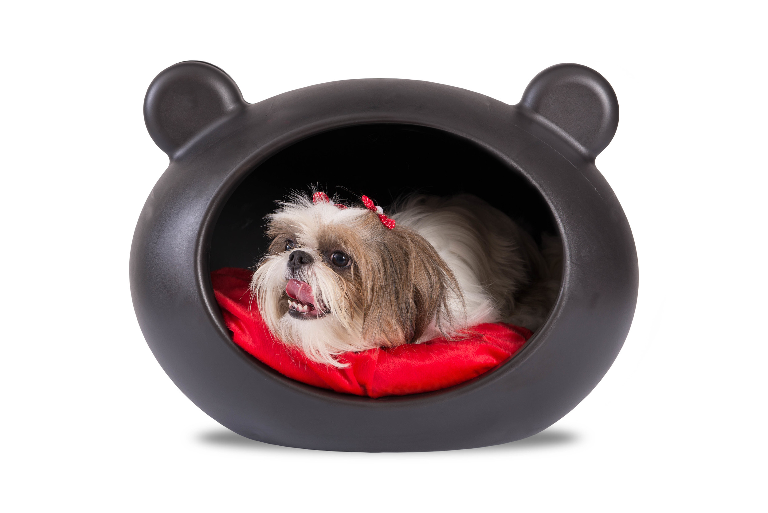 DCP-RED Small Black Dog Cave with Red Cushion.jpg
