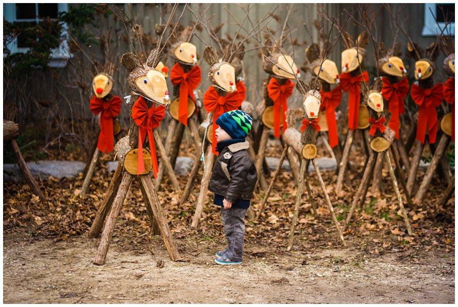 Drysdale Farm Family Photography - Love Bee Photography_0114.jpg