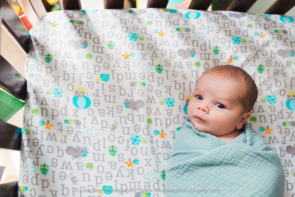 Newmarket Newborn Photographer - Love Bee Photography-5.jpg