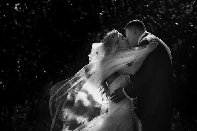 Backyard-Wedding-Tiny-Township-Portraits-107.jpg