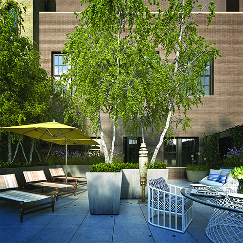 Mulberry Street Proposed Penthouse Garden (Flank Architect & Development Group with Partners & Spade)