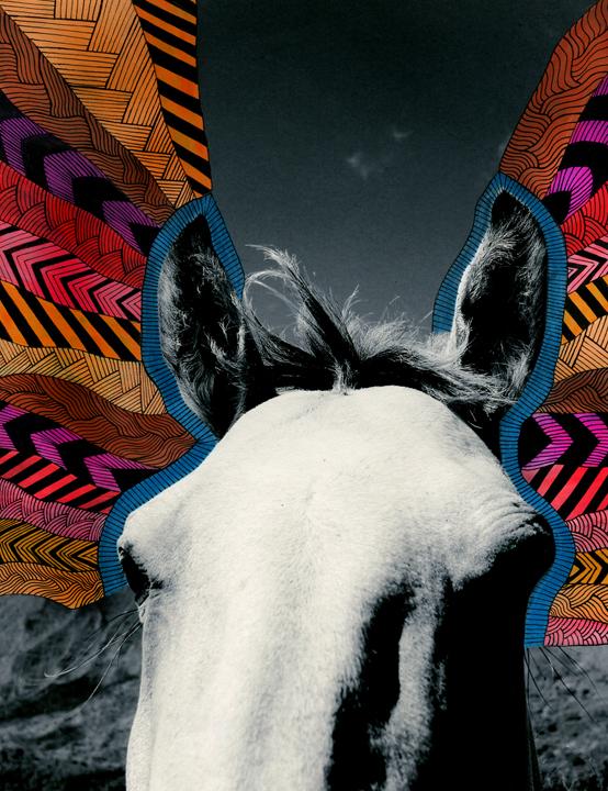 horseface20x26.jpg