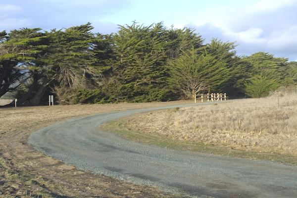 Wavecrest Trail.jpg