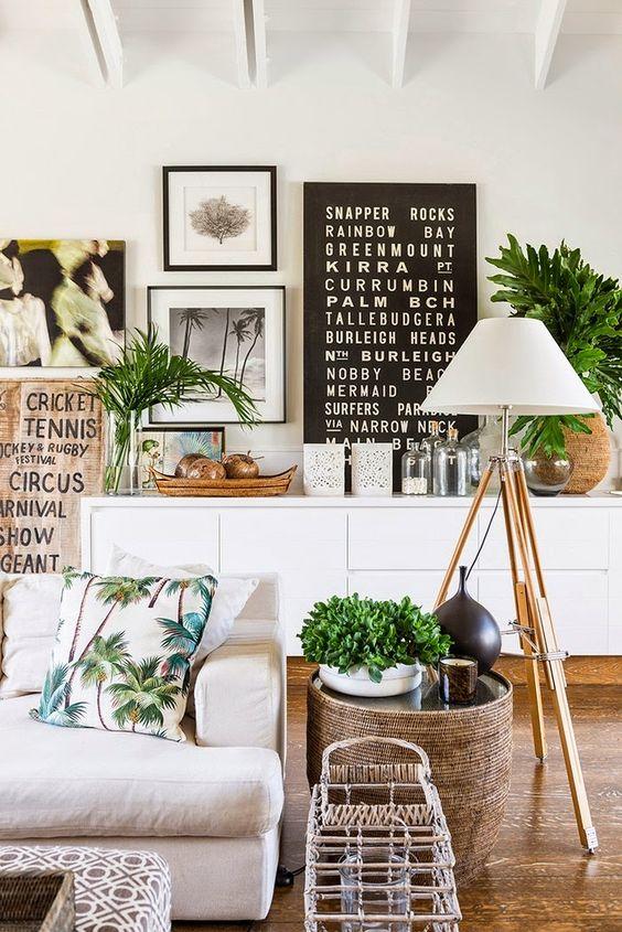 emmme studio reformas diseño plantas cactus.jpg