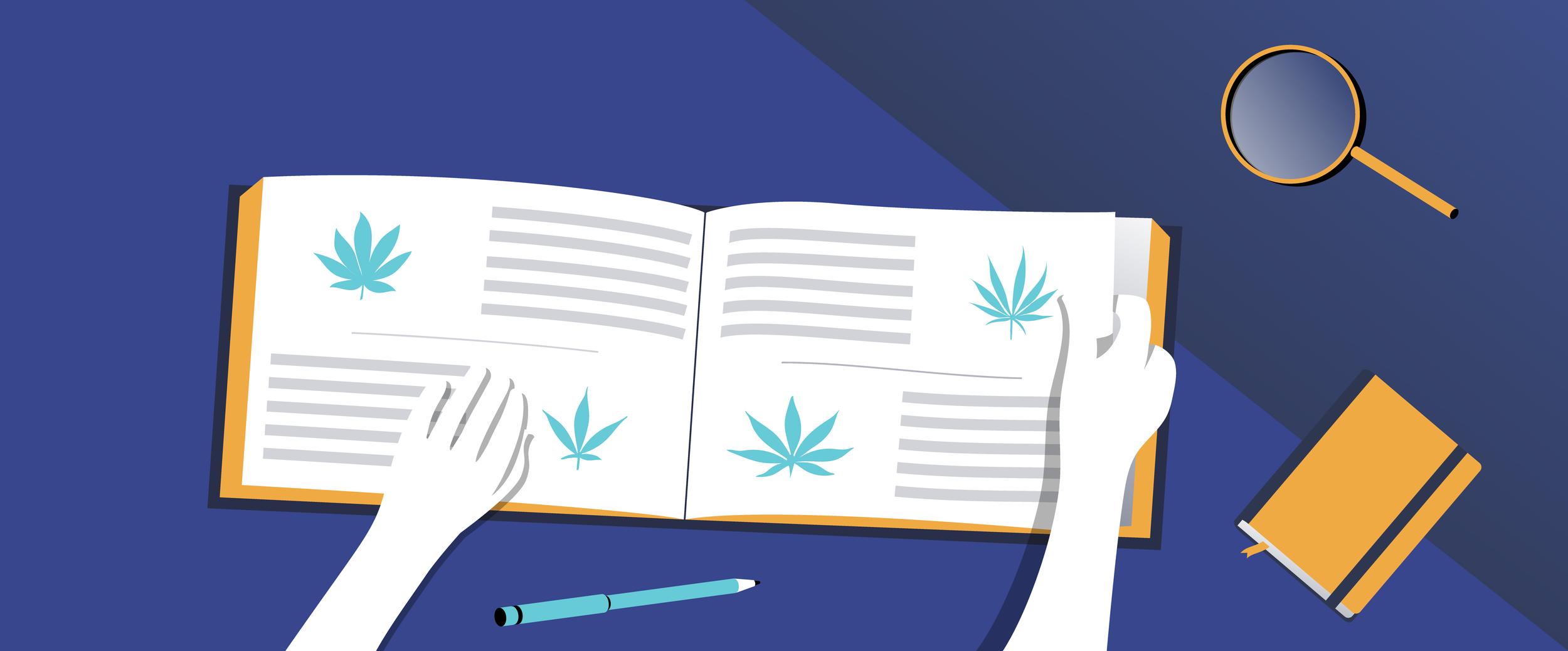 Marijuana myths.