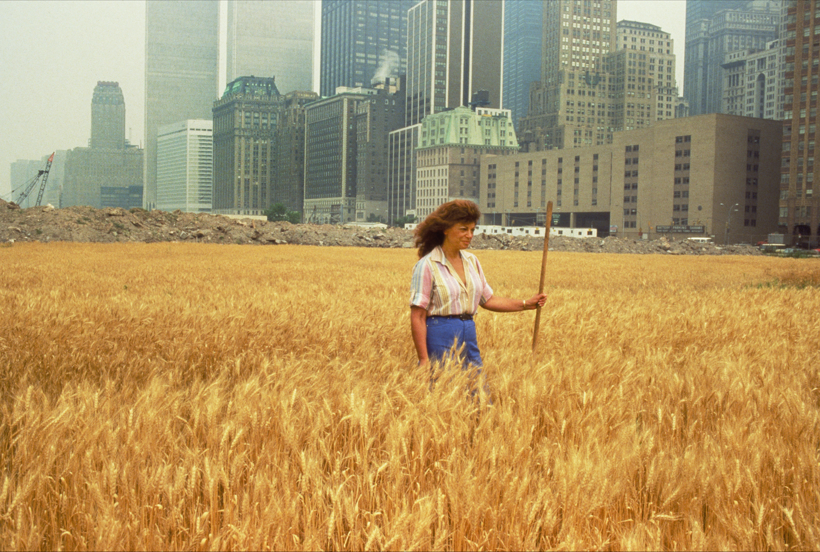 Wheatfield with Agnes Denes standing in the Wheatfield - A Confrontation: Battery Park Landfill (Downtown Manhattan), 1982, Agnes Denes