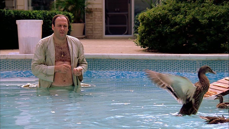 pool-ep1.jpg