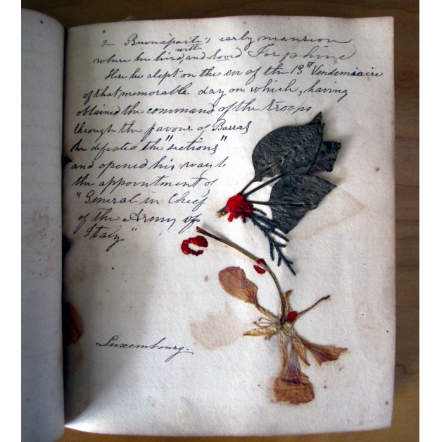 A page from Octavia Jones's 'Book of Relics', which includes pressed plant specimens from the places she visited in 1844