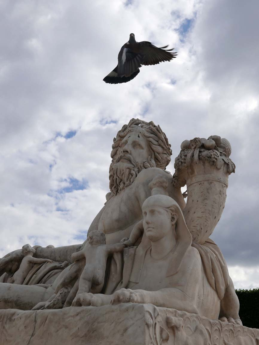 Fortuitous pigeon placement, Tuilleries