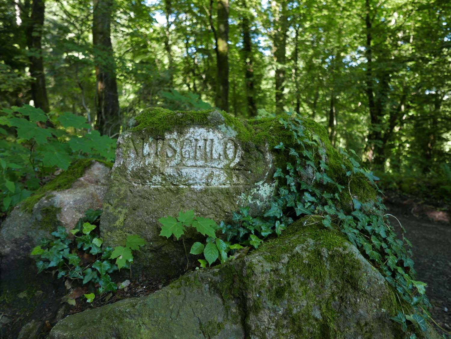 directional sign on the hiking trail