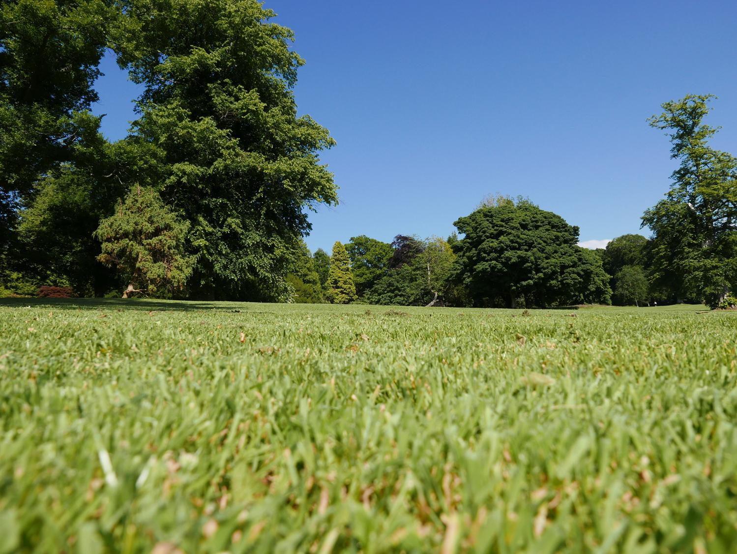 Balloch Castle grounds