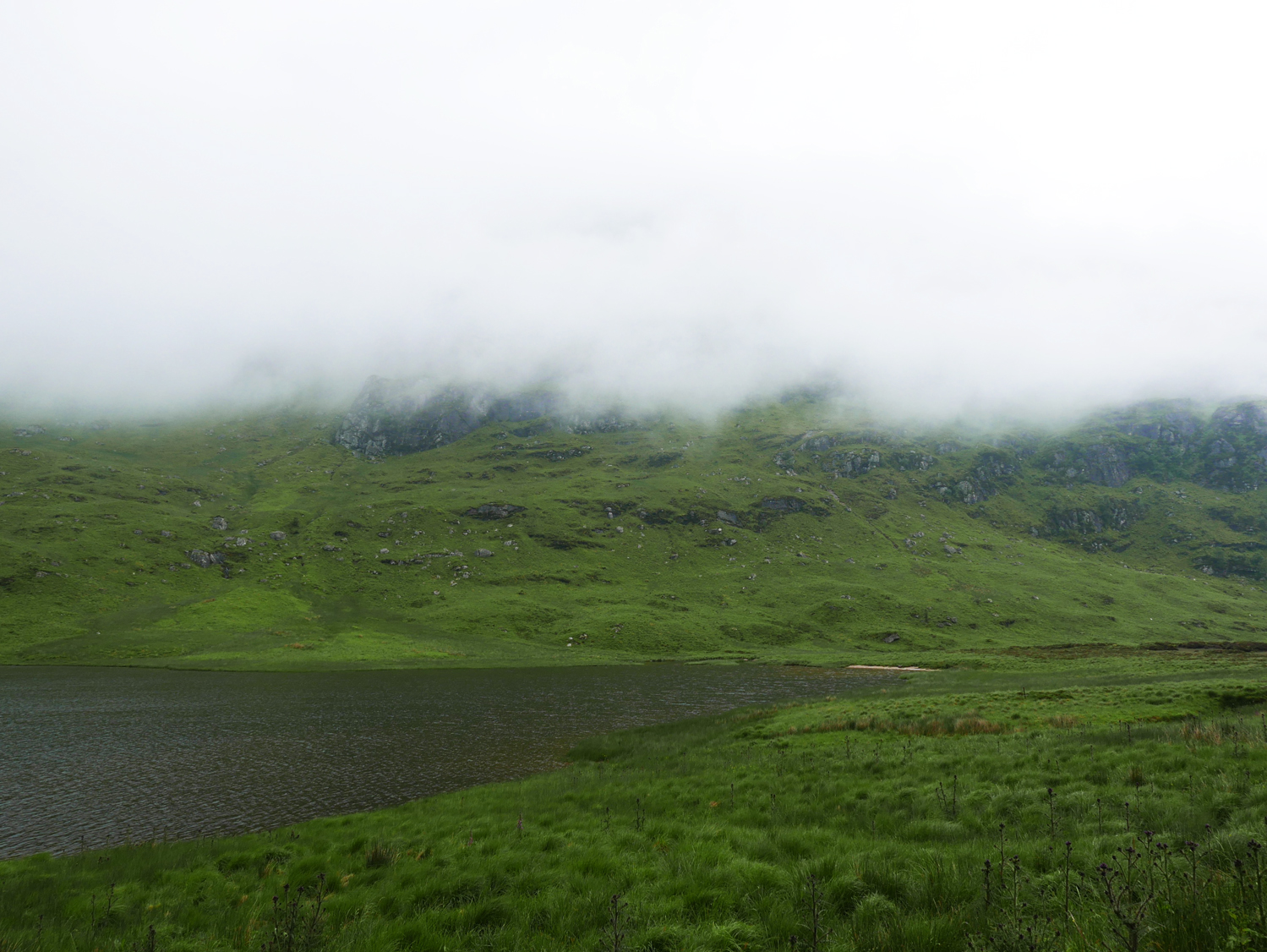 Fog in the highlands