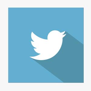 Twitter   3,317 Followers