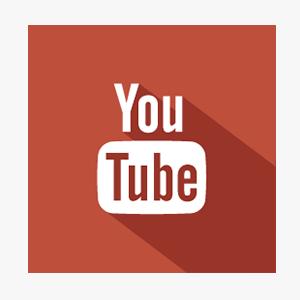 YouTube   850+ Subs. 230K+ Views