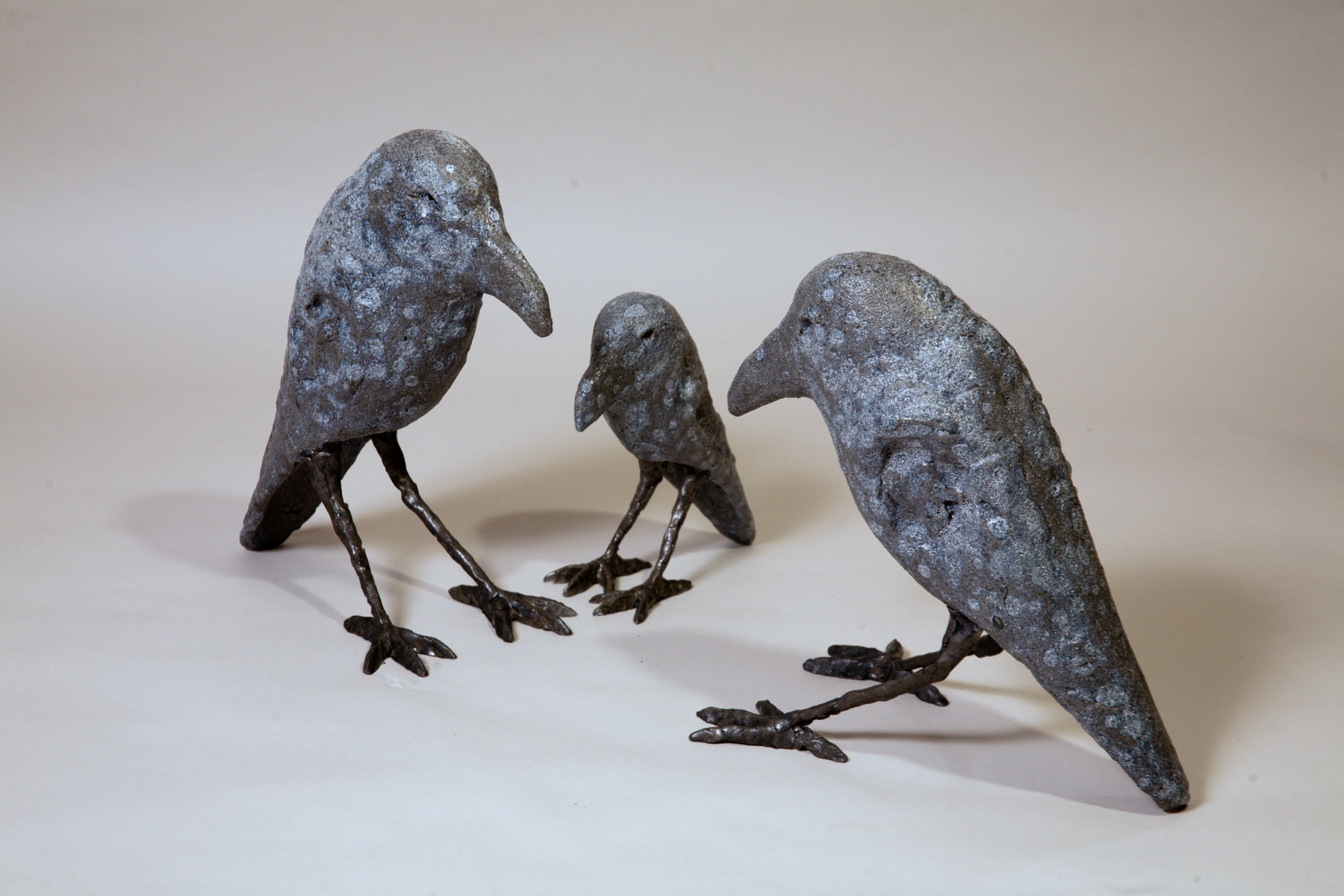 DThomas_Crows Small and Large.jpg