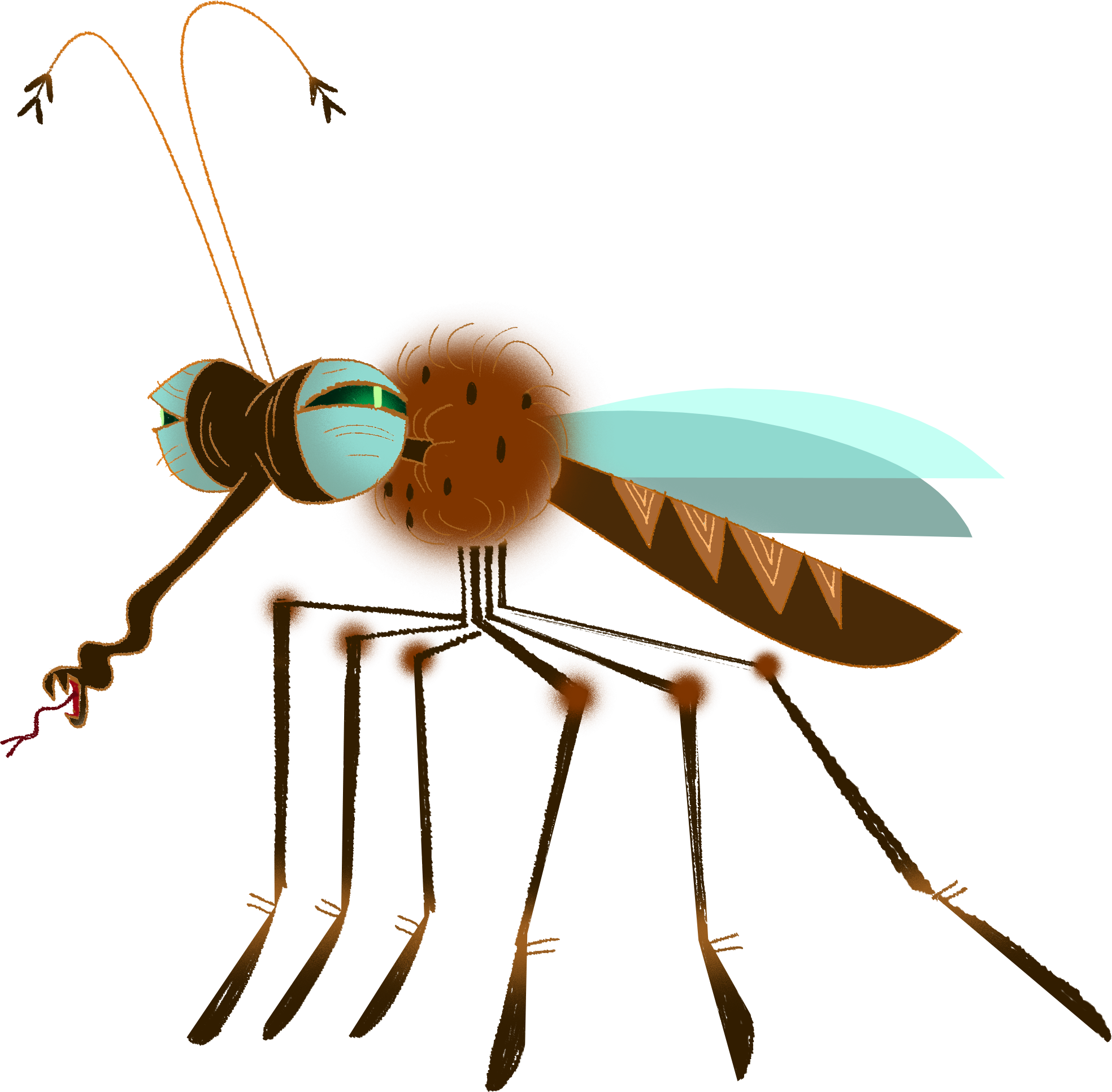 mosquito_01.png