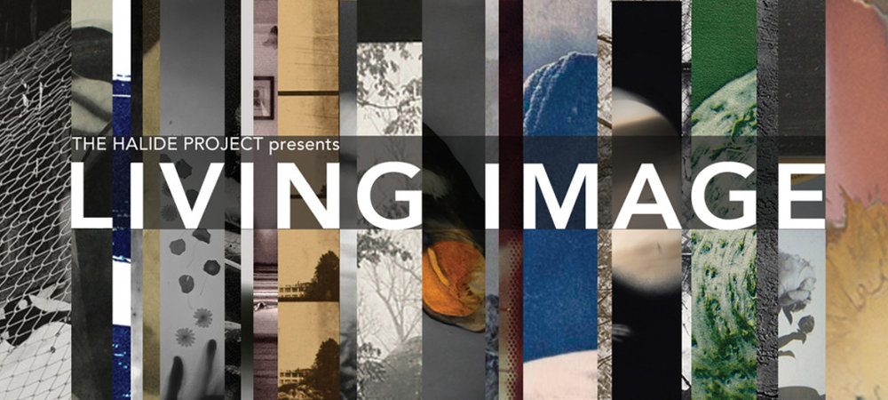LivingImage2017ExhibitionWebBanner-1024x461.jpg