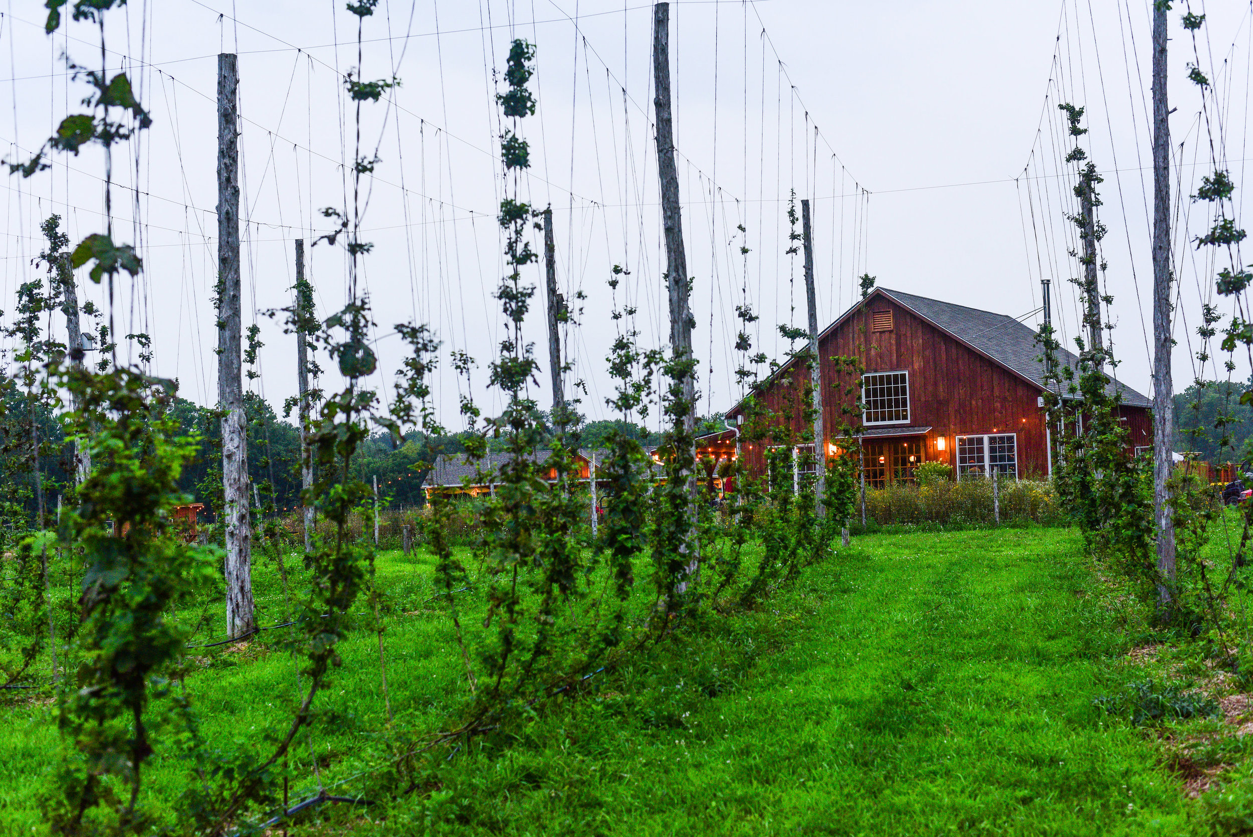 TAPROOM - Our Farm Brewery & Taproom are located in Accord, NY. Enjoy a pint with friends on the patio, take in some breathtaking sunsets over our fields and stroll through the dramatic trellis system of the hop yard.Lekker Food Truck is with us serving up a delicious rotating seasonal menu!Check out our events calendar below. We are looking forward to some great music and fun this season!WEDDINGS & PRIVATE EVENTS CLICK HERE.