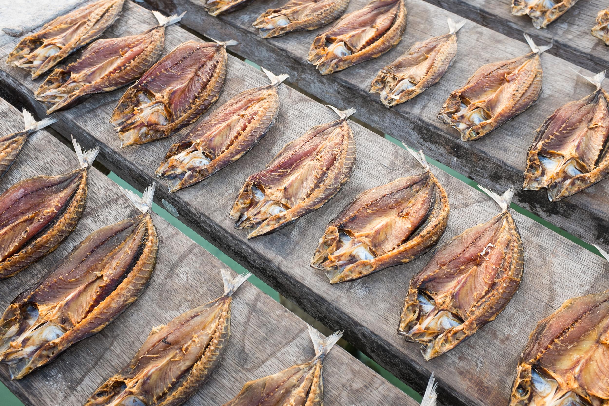 fish-drying.jpg