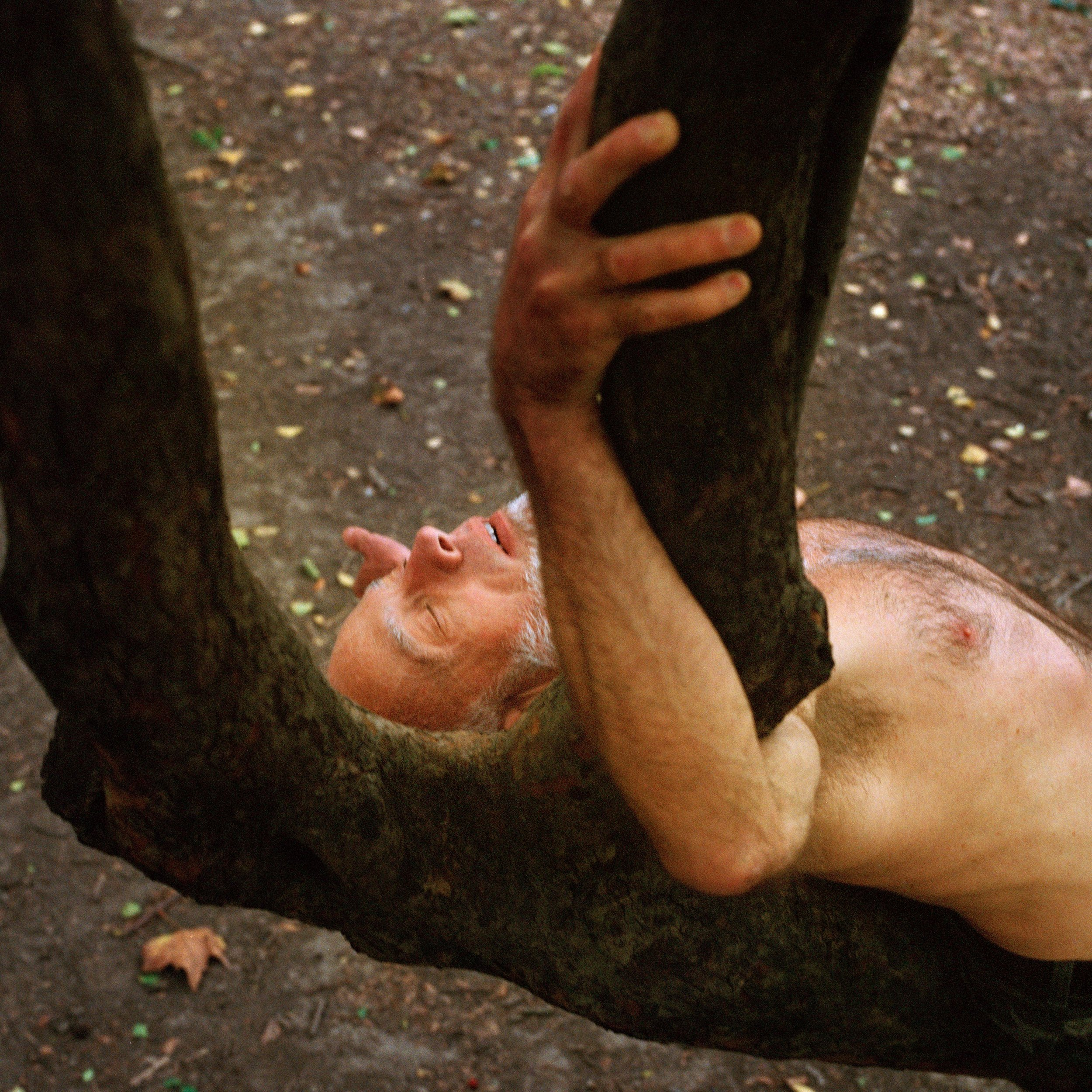 41_Dennis in the Tree_1.jpg