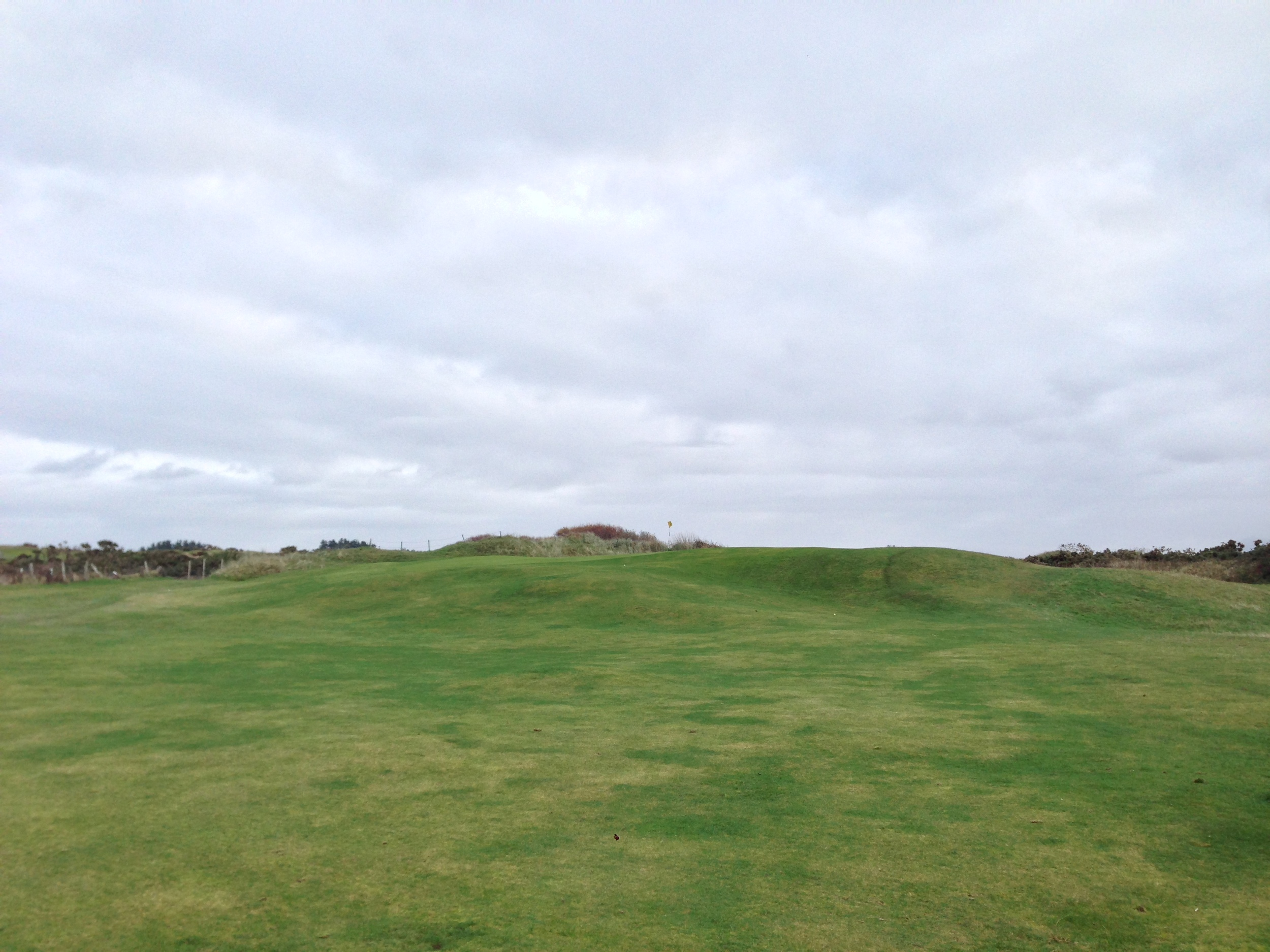 My most pleasant surprise golfing this year--the 10th green at Dooks