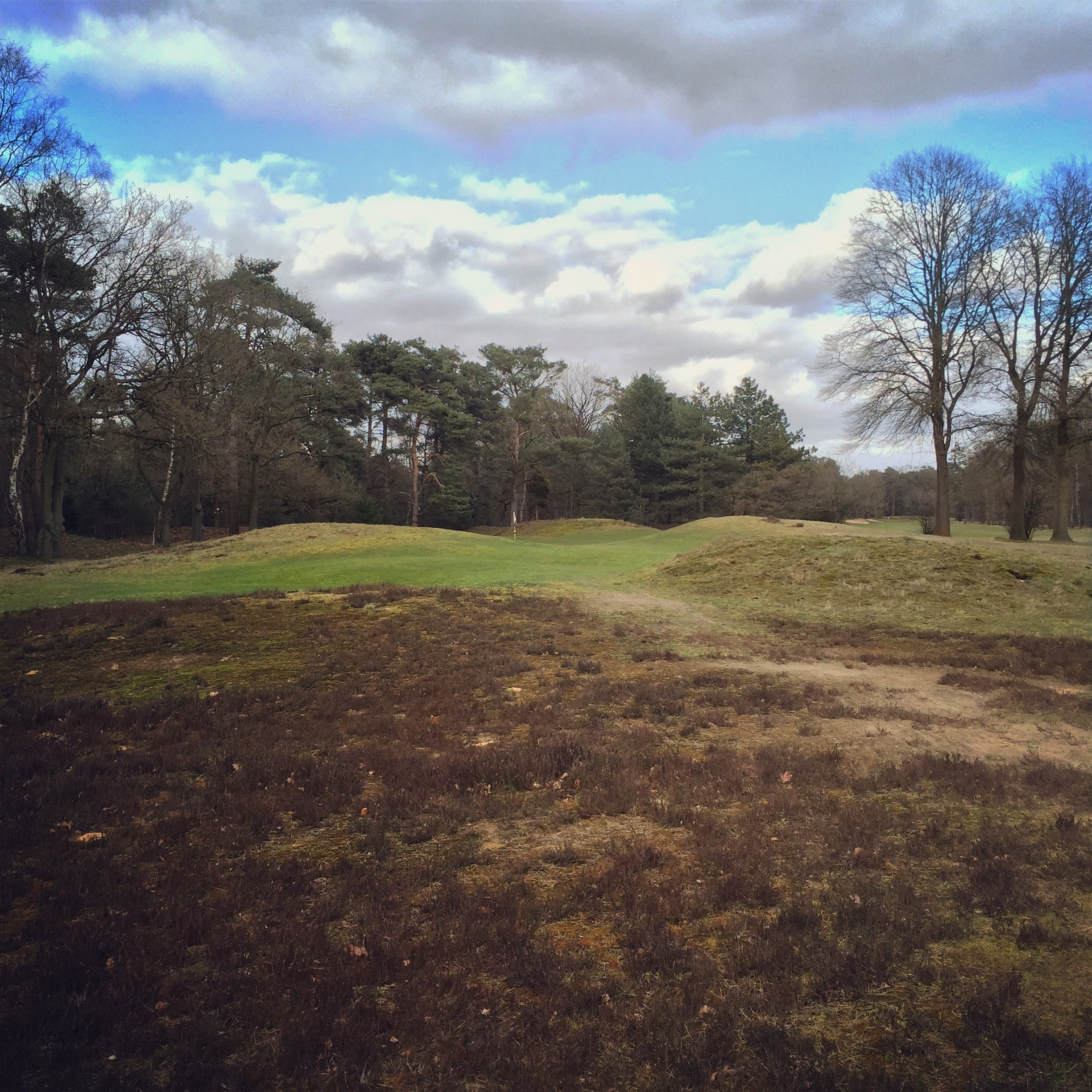 The 3rd hole at Eindhoven is cleverly tucked behind some natural landforms