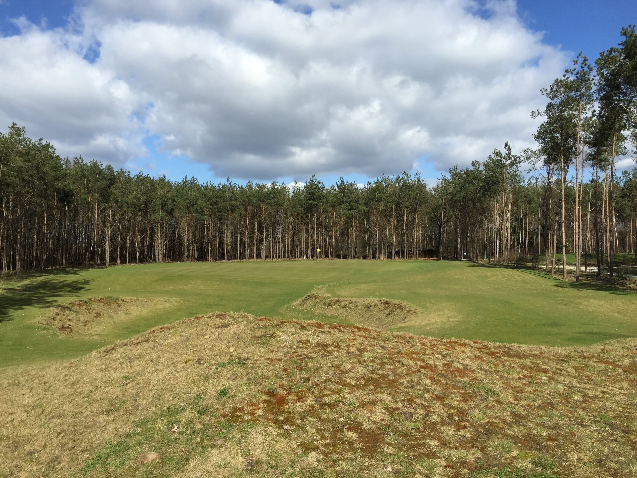 The maintenance meld at Swinkelsche is perfection: fast and natural