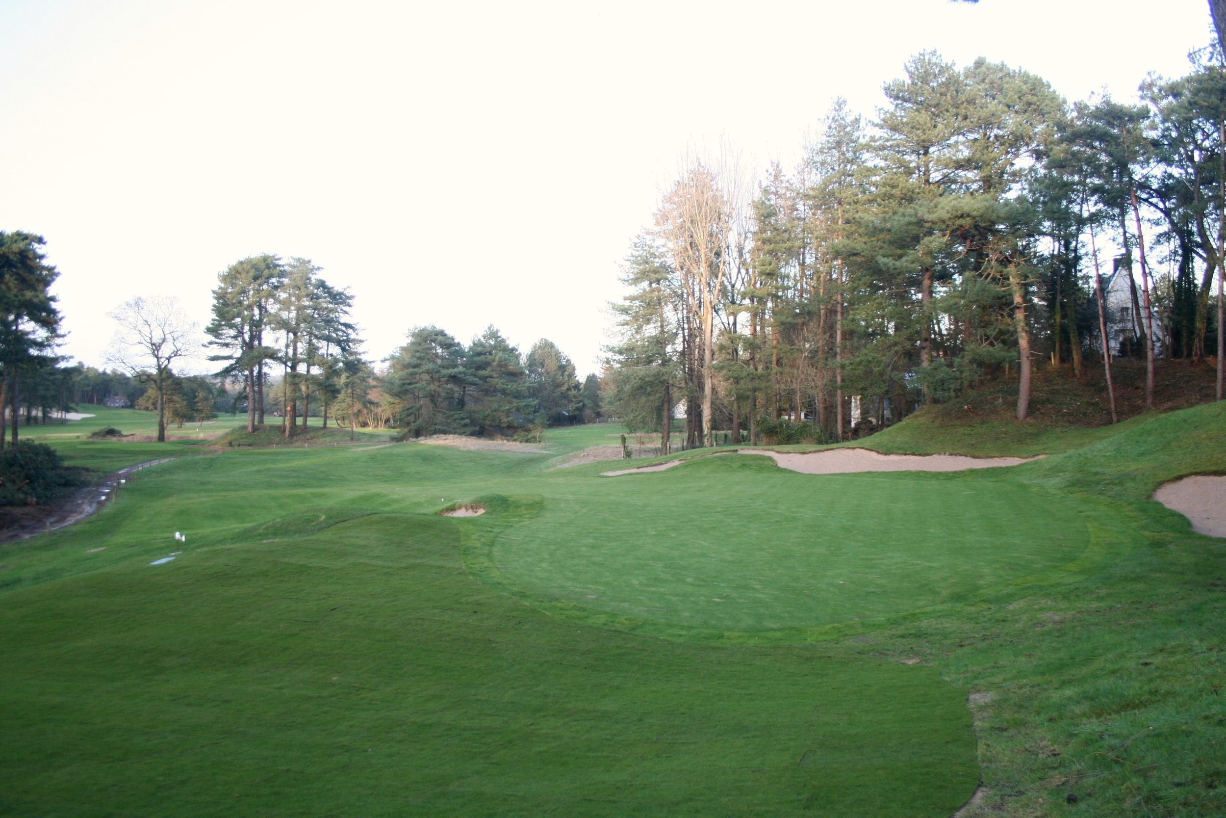Back view of the edited 14th green.