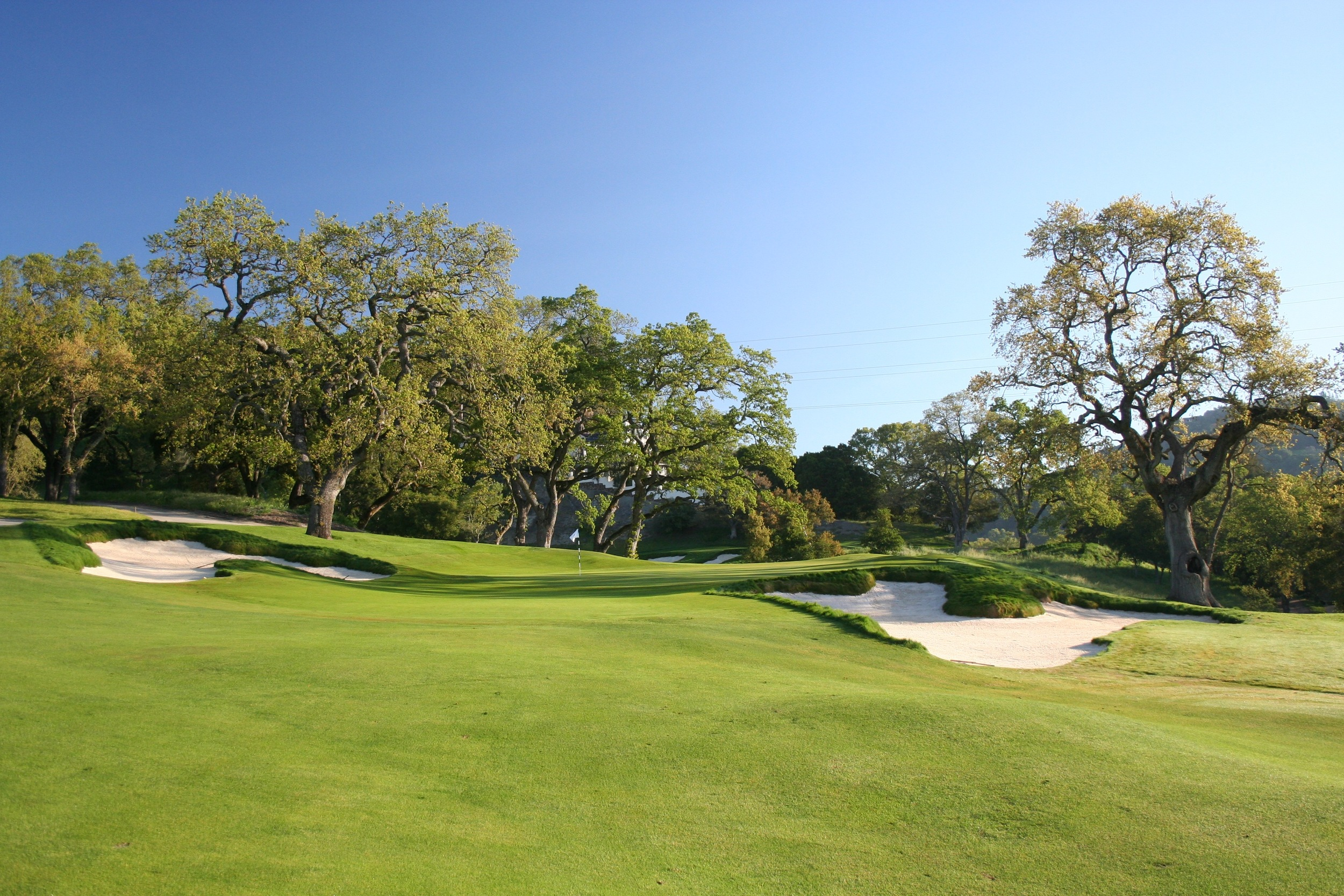 The second green was once surrounded by trees and containment mounding added much after the course's original design. By removing non-indigenous trees and the mass of earth back and right, the view from one of the best spots on the course has been opened up 180 degrees, including a look through to the distant 4th green and bunkers.