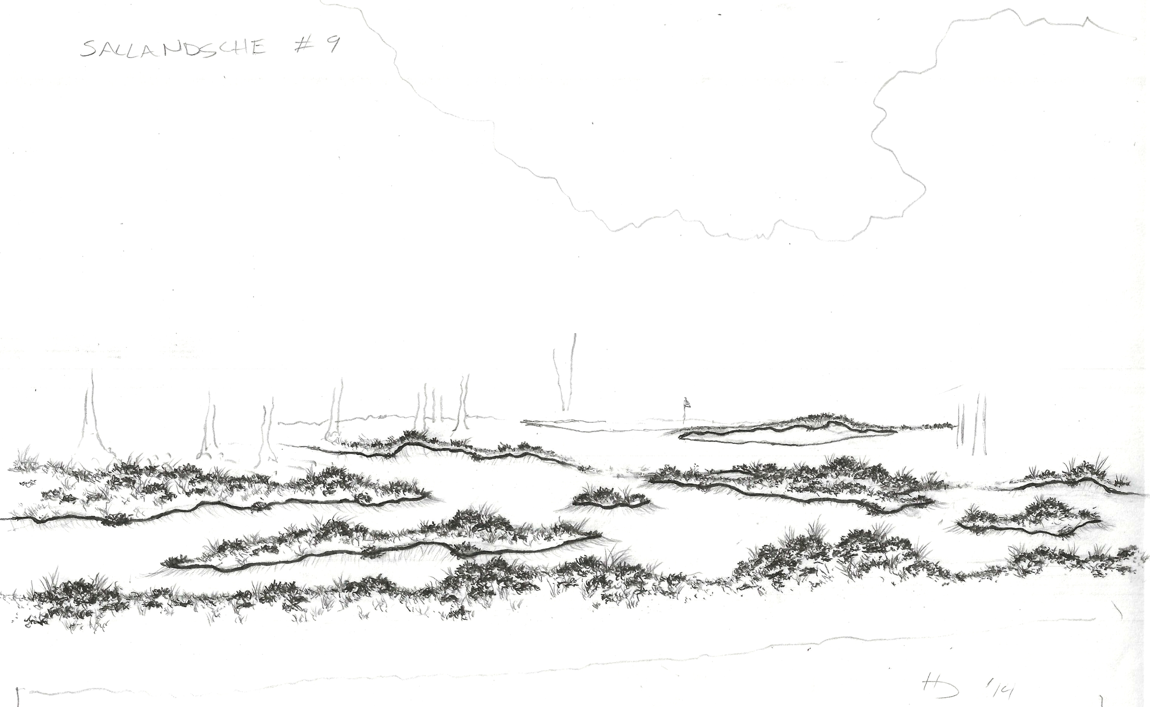This was a concept for a naturalized area for the 9th hole at Sallandsche, which was just left to be heather.