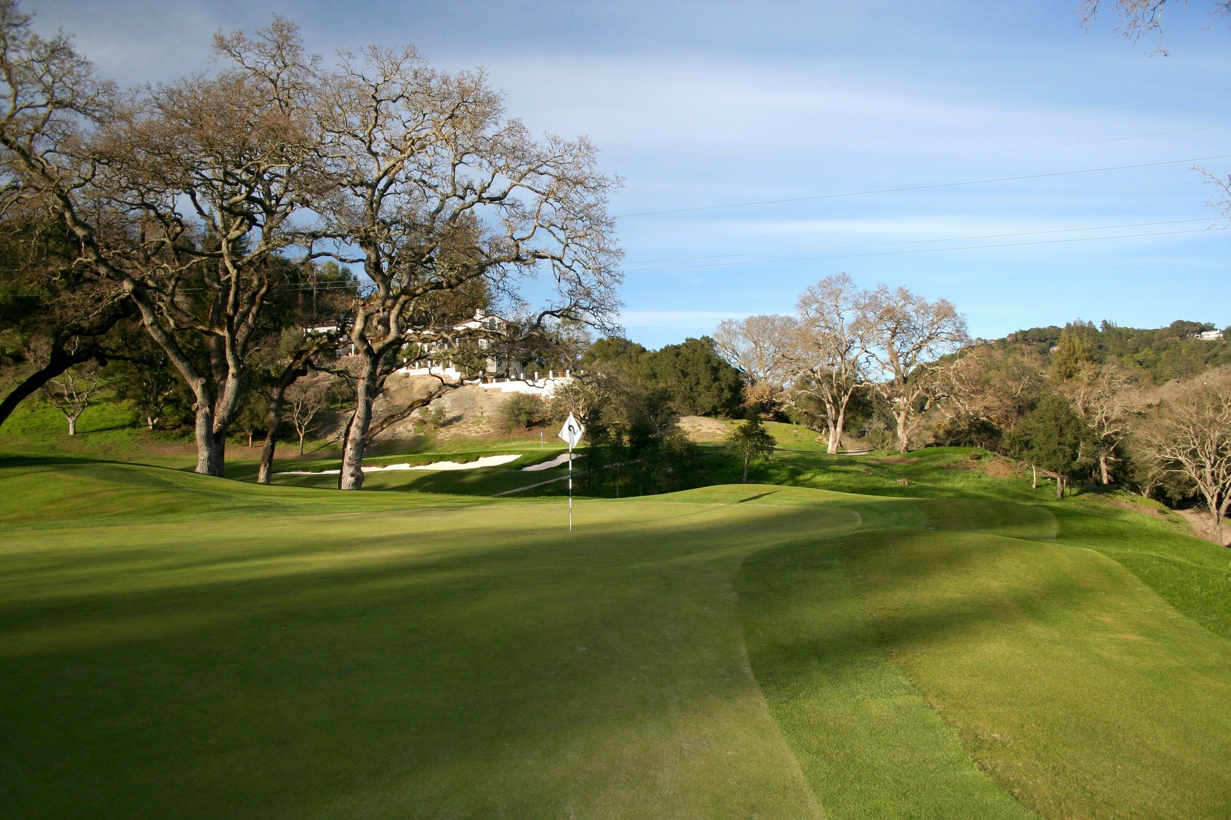 The green on the 2nd was also extended back and right to create more drama as well as engage golfers with the views.